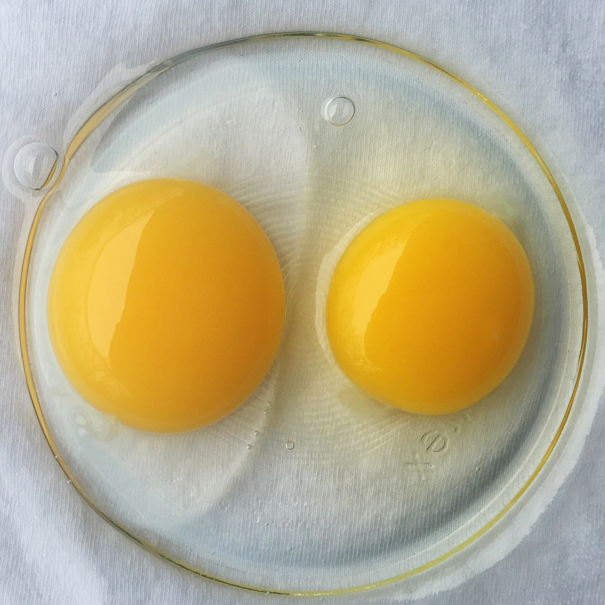 From Midnight To Duck Egg See: The Benefits Of Duck Eggs